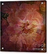 As Time Goes By Acrylic Print by Lianne Schneider