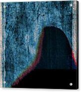 Ascent Acrylic Print by Carol Leigh
