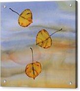Aspen In Fall Acrylic Print by Carolyn Doe