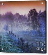 Aurora Acrylic Print by Mo T