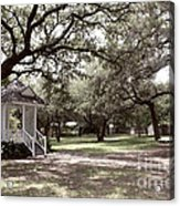 Austin Texas Southern Garden - Luther Fine Art Acrylic Print by Luther  Fine  Art