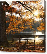Autumn Beauty Acrylic Print by Debra and Dave Vanderlaan