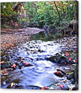 Autumn Begins Acrylic Print by Frozen in Time Fine Art Photography