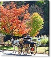 Autumn Carriage Ride Acrylic Print by Barbara McDevitt