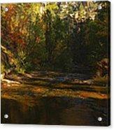 Autumn Colors By The Creek  Acrylic Print by Saija  Lehtonen