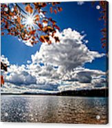 Autumn  Confidential  Acrylic Print by Bob Orsillo