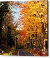 Autumn Country Road Acrylic Print by Joann Vitali