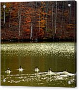 Autumn Cove Acrylic Print by Karen Wiles