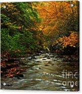 Autumn Creek Acrylic Print by Melissa Petrey