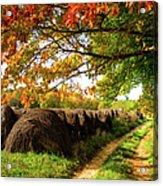 Autumn Hay Bales Blue Ridge Mountains II Acrylic Print by Dan Carmichael