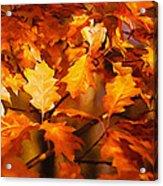 Autumn Leaves Oil Acrylic Print by Steve Harrington