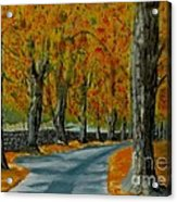 Autumn Pathway Acrylic Print by Anthony Dunphy