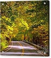 Autumn Road Acrylic Print by Carol Groenen