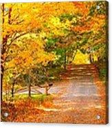 Autumn Road Home Acrylic Print by Terri Gostola
