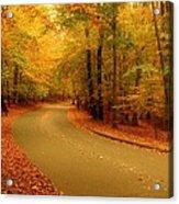 Autumn Serenity - Holmdel Park  Acrylic Print by Angie Tirado