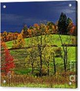Autumn Storm Acrylic Print by Thomas R Fletcher