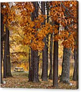 Autumn View Acrylic Print by Sandy Keeton