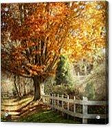 Autumn - Westfield Nj - I Love Autumn Acrylic Print by Mike Savad