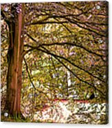 Autumnal Colors In The Summer Time. De Haar Castle Park Acrylic Print by Jenny Rainbow