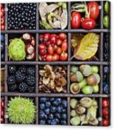 Autumnal Harvest Acrylic Print by Tim Gainey