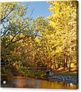 Autumn's Golden Pond Acrylic Print by Kim Hojnacki