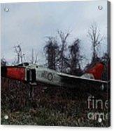 Avro Arrow In The Cove Acrylic Print by Tom Straub