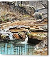 Away From Cover - Bobcat Acrylic Print by Phillip  Powell