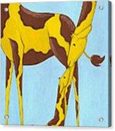 Baby Giraffe Nursery Art Acrylic Print by Christy Beckwith