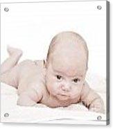 Baby Acrylic Print by Jelena Jovanovic