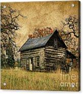 Backwoods Cabin Acrylic Print by Steve McKinzie