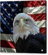 Bald Eagle 321 Acrylic Print by Joyce StJames