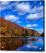 Bald Mountain Pond In Autumn Acrylic Print by David Patterson