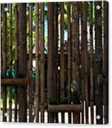 Bamboo View Acrylic Print by Georgia Fowler