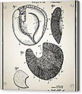 Baseball Glove Patent Acrylic Print by Digital Reproductions