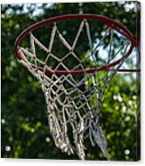Basket - Featured 3 Acrylic Print by Alexander Senin