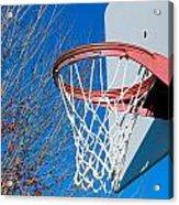 Basketball Net Acrylic Print by Valentino Visentini