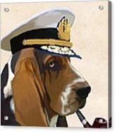 Basset Hound Seadog Acrylic Print by Kelly McLaughlan