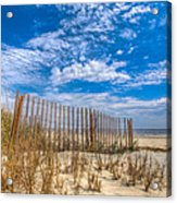 Beach Under Blue Skies Acrylic Print by Debra and Dave Vanderlaan