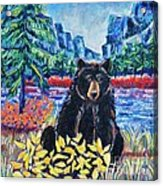 Bear By The Lake Acrylic Print by Harriet Peck Taylor