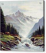 Bear Mountain Acrylic Print by Robert Foster