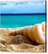 Beautiful Caribbean Sea Acrylic Print by Boon Mee