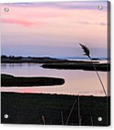 Beautiful Pink And Purple Sunset Over A New England Tidal Salt M Acrylic Print by Marianne Campolongo