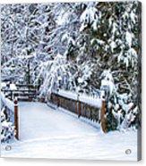 Beauty Of Winter Acrylic Print by Kathy Jennings