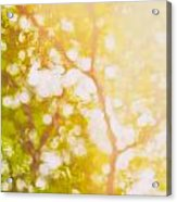 Beneath A Tree  14 5199   Diptych  Set 1 Of 2 Acrylic Print by Ulrich Schade