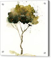 Bent Tree With Blackbird Acrylic Print by Vickie Sue Cheek