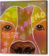 Best Friend Acrylic Print by Roger Wedegis