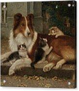 Best Of Friends Acrylic Print by Wilhelm Schwar