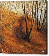 Beyond Silence Acrylic Print by Kiril Stanchev