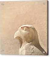 Bird Of Prey.. Acrylic Print by A Rey
