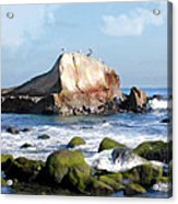 Bird Sentry Rock At Dana Point Harbor Acrylic Print by Elaine Plesser